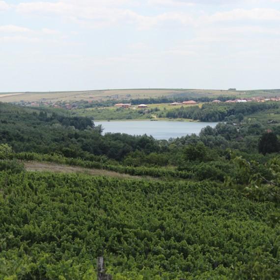 A Pajdosból jól látszik az Ostorosi-tó